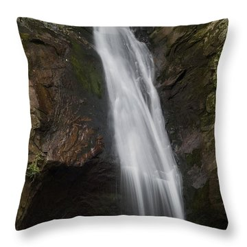 Courthouse Falls North Carolina Throw Pillow