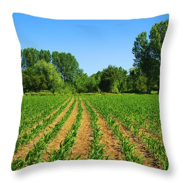 Cultivated Land Throw Pillow by Carlos Caetano