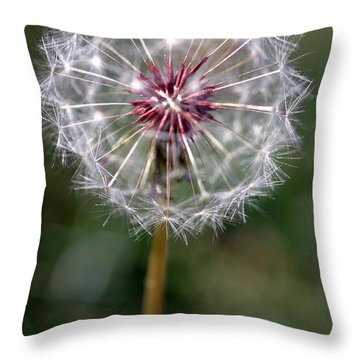 Throw Pillow featuring the photograph Dandelion Seed Head by Henrik Lehnerer