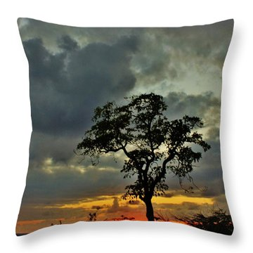 Day's End Throw Pillow by Craig Wood