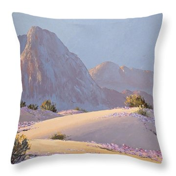 Throw Pillow featuring the painting Desert Prelude by Dan Redmon