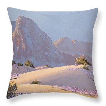 Desert Prelude Throw Pillow