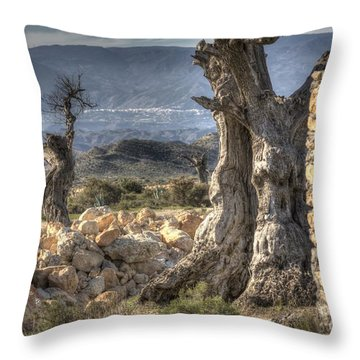 Deserted Throw Pillow by Heiko Koehrer-Wagner