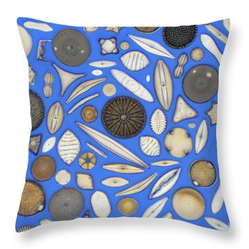 Diatoms Throw Pillow by Kent Wood