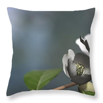 Dogwood Throw Pillow by Cynthia Decker