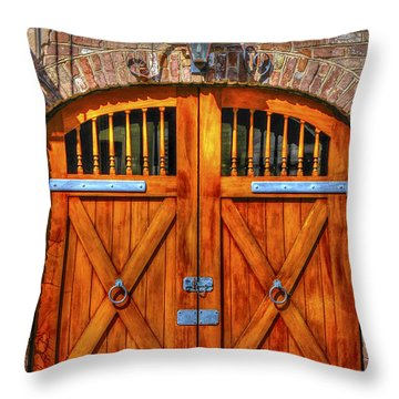 Doors Of Charleston Throw Pillow