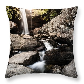 Eagle Falls Throw Pillow