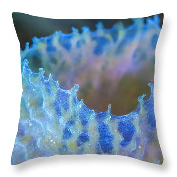 Edge Work Throw Pillow by Jean Noren
