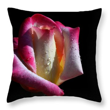 Elegance Throw Pillow by Doug Norkum