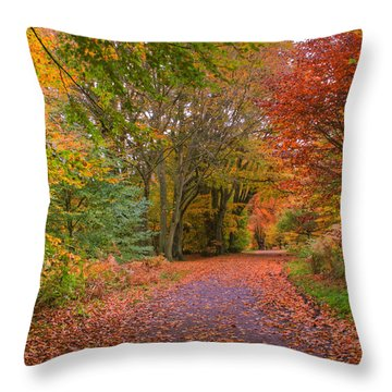 Epping Throw Pillows