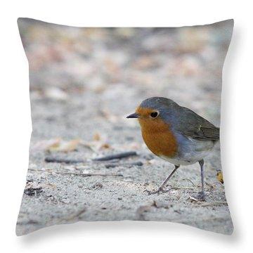 Throw Pillow featuring the photograph European Robin - Erithacus Rubecula by Jivko Nakev