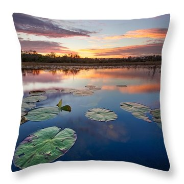 Everglades At Sunset Throw Pillow by Debra and Dave Vanderlaan