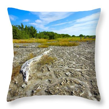 Everglades Coastal Prairies Throw Pillow