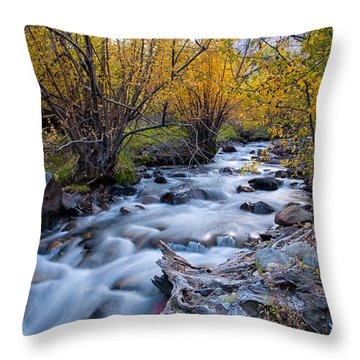 Fall At Big Pine Creek Throw Pillow by Cat Connor