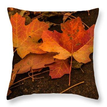 West Fork Fallen Leaves Throw Pillow