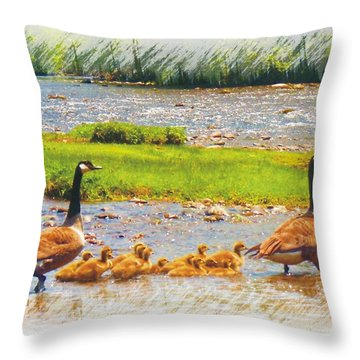 Family Field Trip Throw Pillow