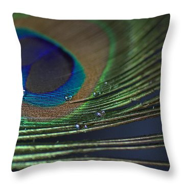 Feather Weight Throw Pillow by Fraida Gutovich