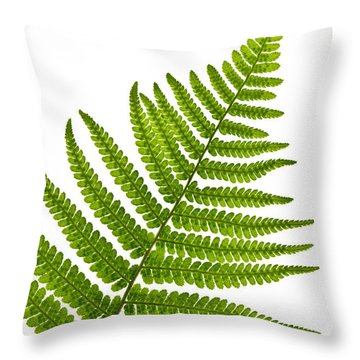 Fern Leaf Throw Pillow