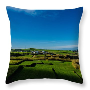 Throw Pillow featuring the photograph Fields Of Green And Yellow by Joseph Amaral