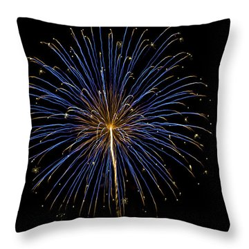 Fireworks Bursts Colors And Shapes Throw Pillow
