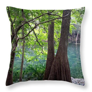 Florida Springs Throw Pillow by Louis Ferreira