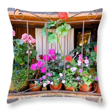 Flowers In A Mexican Window Throw Pillow