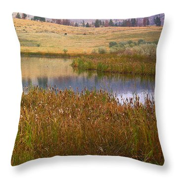 Gamble Pond  Throw Pillow by Kathy Bassett