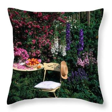 Garden With Chair Throw Pillow by Hans Reinhard