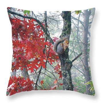 Gather Ye Nuts Throw Pillow