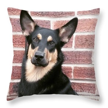 #germanshepherddog #germanshepherd #gsd Throw Pillow