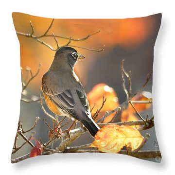 Throw Pillow featuring the photograph Glowing Robin by Nava Thompson