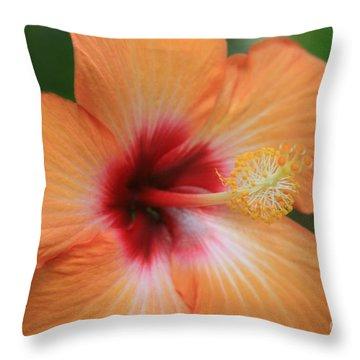 Gods Garden Throw Pillow by Sharon Mau
