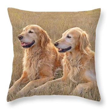 Golden Retrievers In Golden Field Throw Pillow