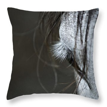 Throw Pillow featuring the photograph Gracie by Joan Davis