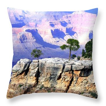 Grand Canyon 1 Throw Pillow by Will Borden