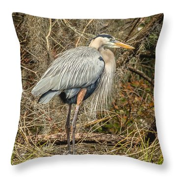 Great Blue Heron Throw Pillow by Jane Luxton
