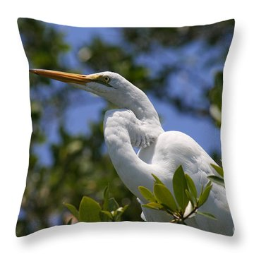 Great Egret 02 Throw Pillow by E B Schmidt