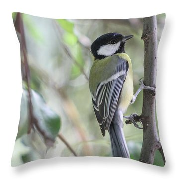 Throw Pillow featuring the photograph Great Tit - Parus Major by Jivko Nakev
