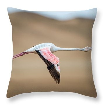 Greater Flamingo Phoenicopterus Roseus Throw Pillow by Panoramic Images