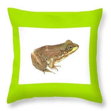 Green Frog Throw Pillow by Cindy Hitchcock