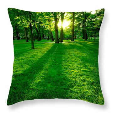Green Park Throw Pillow