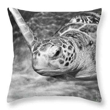 Green Sea Turtle. Throw Pillow by Jamie Pham