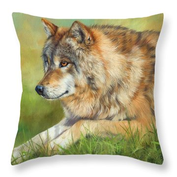 Grey Wolf Throw Pillow by David Stribbling