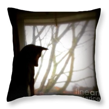 #gsd #germanshepherd #germanshepherddog Throw Pillow