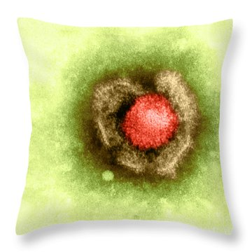 Herpes Simplex Virus Throw Pillow by Kwangshin Kim