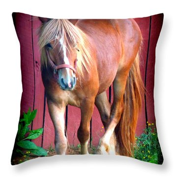 Hitch Throw Pillow