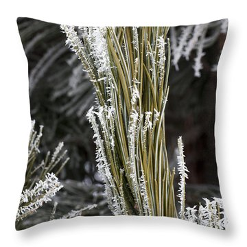 Hoar Frost Throw Pillow by Steven Ralser