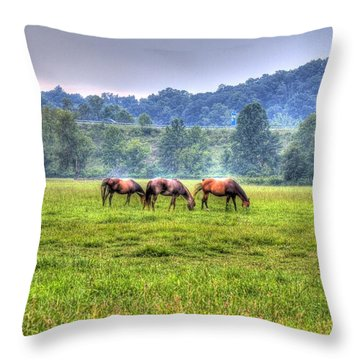 Horses In A Field Throw Pillow by Jonny D
