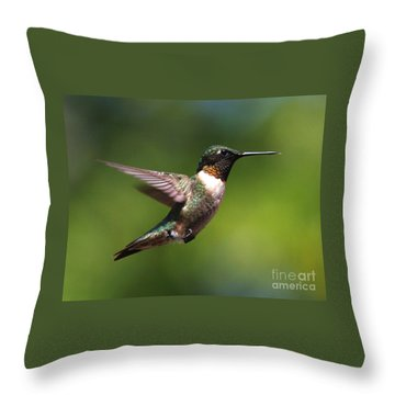 Hummer In Flight Throw Pillow by Douglas Stucky