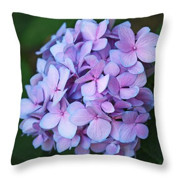 Hydrangea Throw Pillow by Rona Black